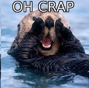 Oh+crap+otter+1_973952_3126507.jpg