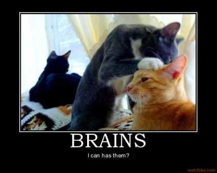 brains-brains-demotivational-poster-1215995715